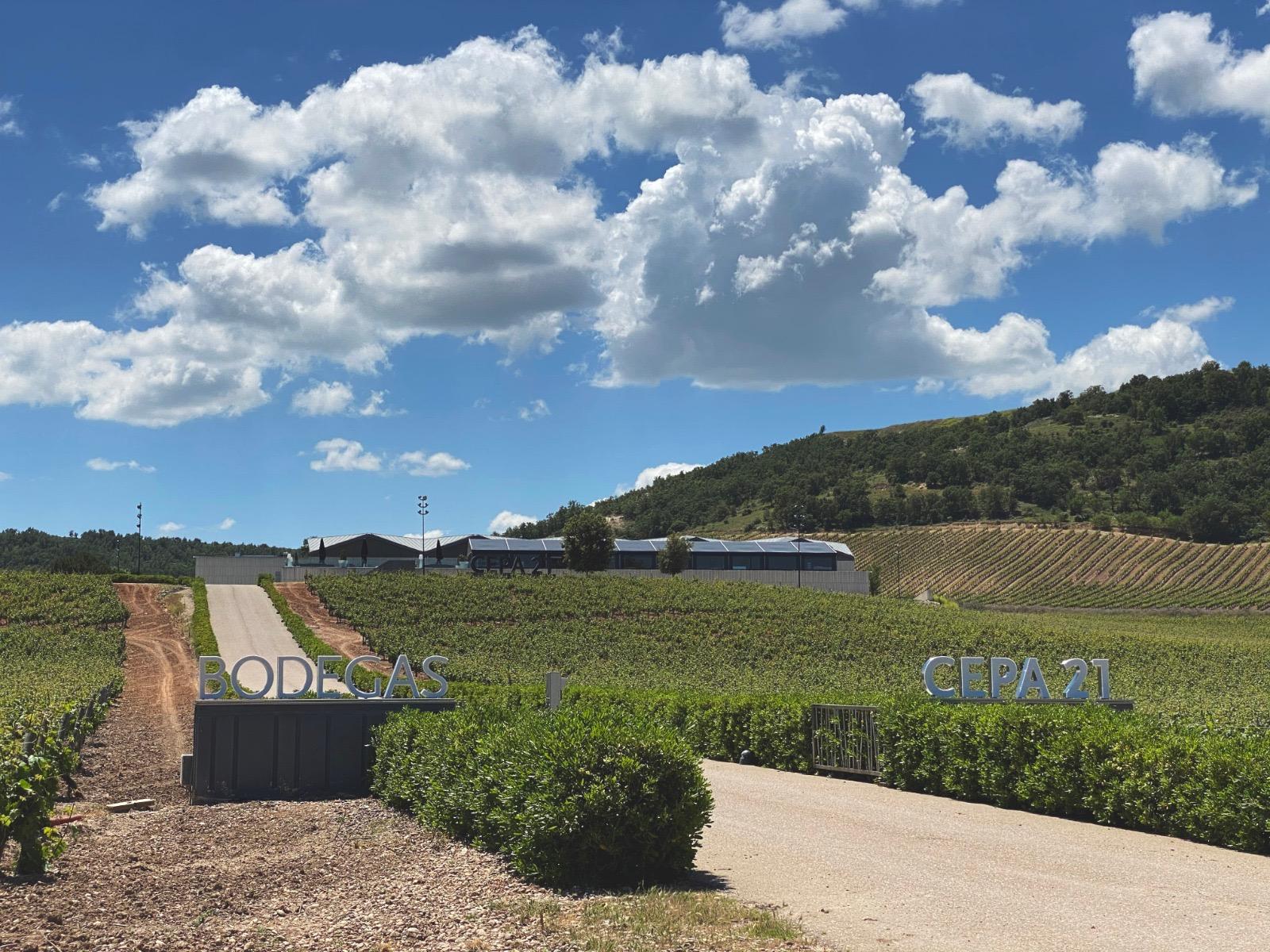 Cepa 21 cuenta con las soluciones de inteligencia artificial de ibm para elaborar los mejores vinos de cada cosecha