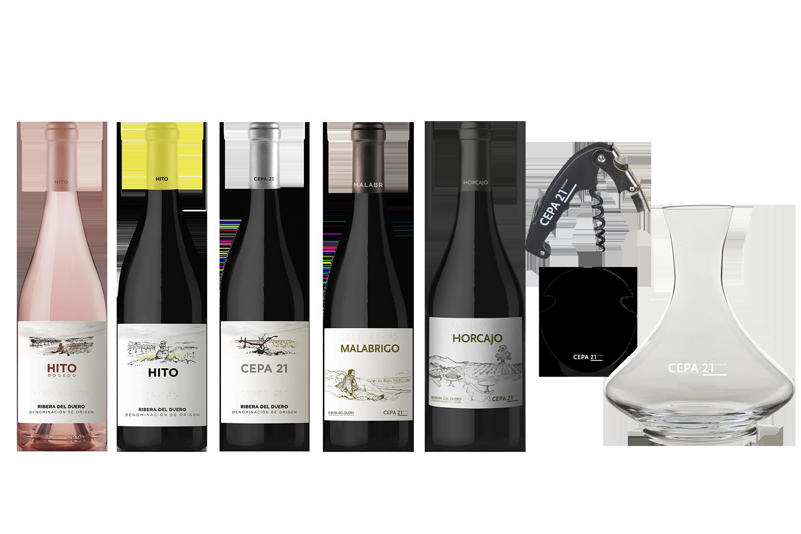 Selección de Vinos Cata Premium